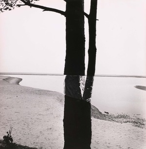 Five Artefacts from the series LAND ART and Scottish Studies. 3/20 edition